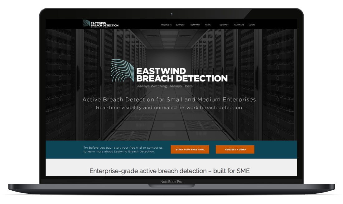 Web Design and Development, Identity and Visual Design | Eastwind Networks, Lehi, UT