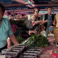 DOMA Trading | E-commerce Business